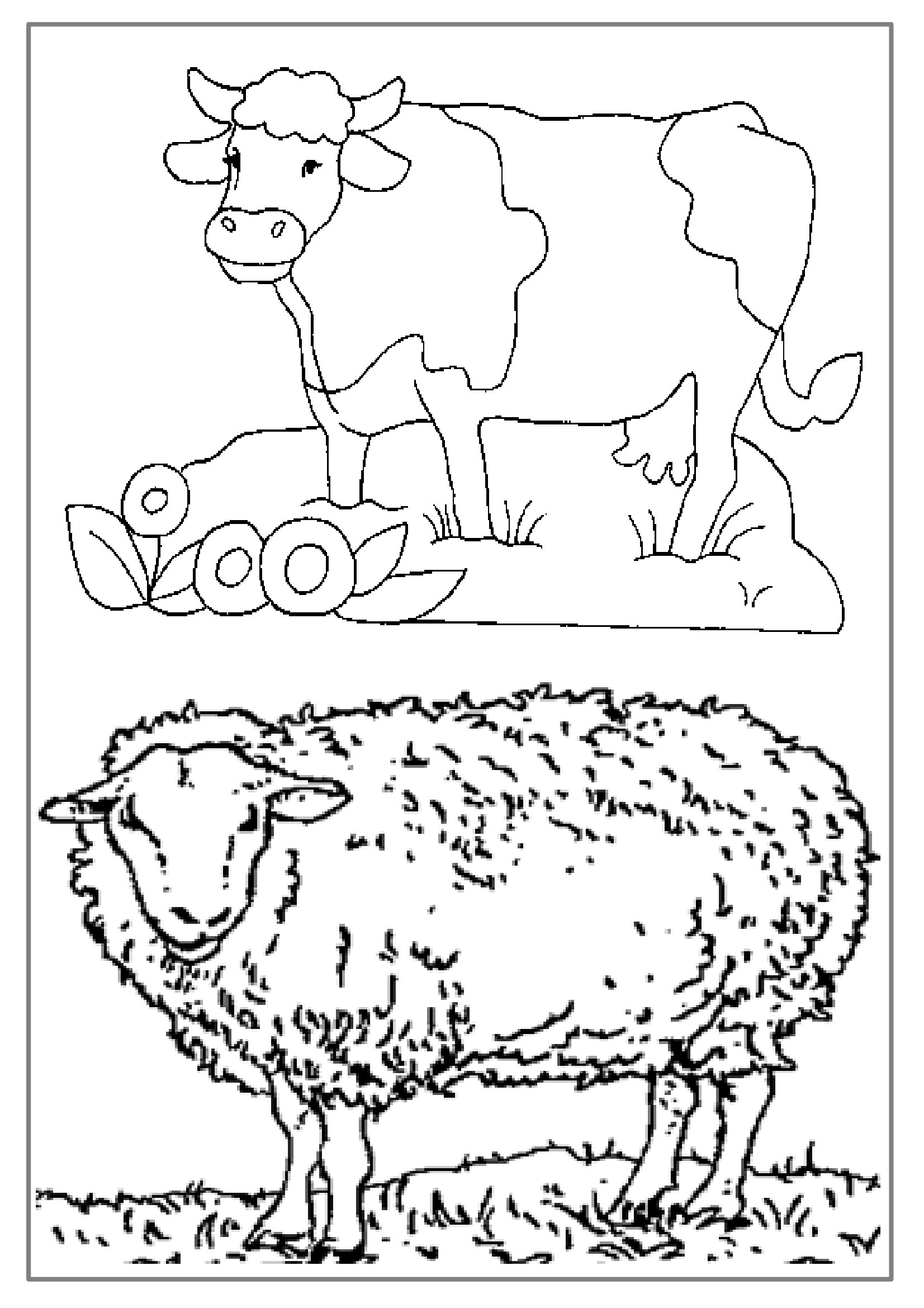 Coloriage Ferme Mouton.Coloriages Educatifs Dessin Animaux De La Ferme A Colorier
